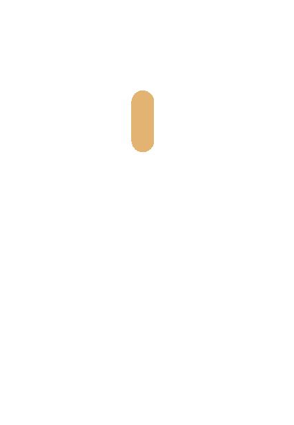 Icon of a computer mouse highlighting the scroll wheel